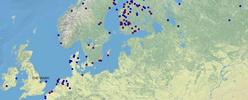 Map showing movements of WWRG-ringed Curlews