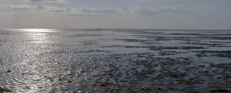 Mudflats at Snettisham Beach