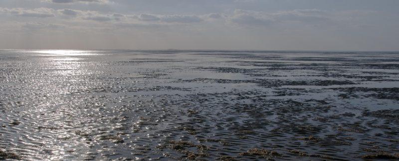 Mudflats at Snettisham Beach