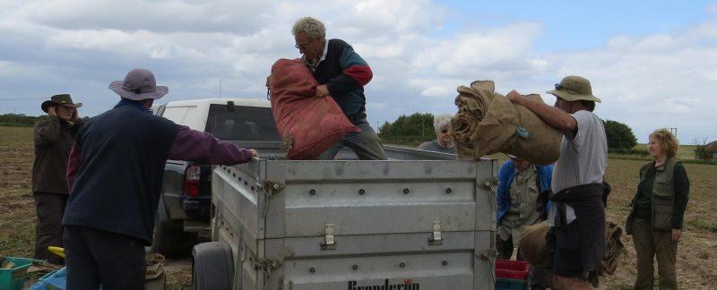 Team filling trailer