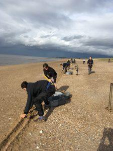 The team setting cannon nets on the beach, by Carole Davis