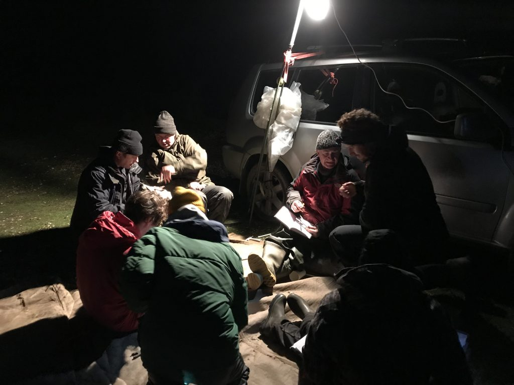 The team processing the birds on the beach in the dark, lit by artificial lights. Photo by Ian Buxton.