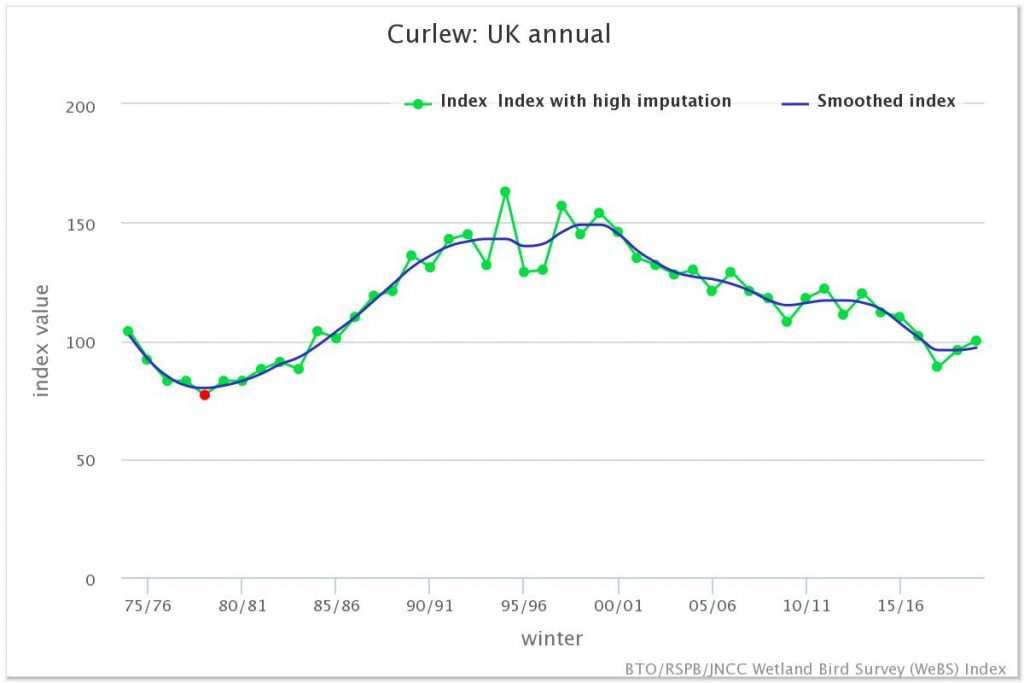 Graph showing numbers of Curlew wintering in the UK showing a sustained decline since the turn of the Century. Dots and green lines show the index and the blue line is the smoothed index. BTO/RSPB/JNCC Wetland Bird Survey (WeBS) Index.